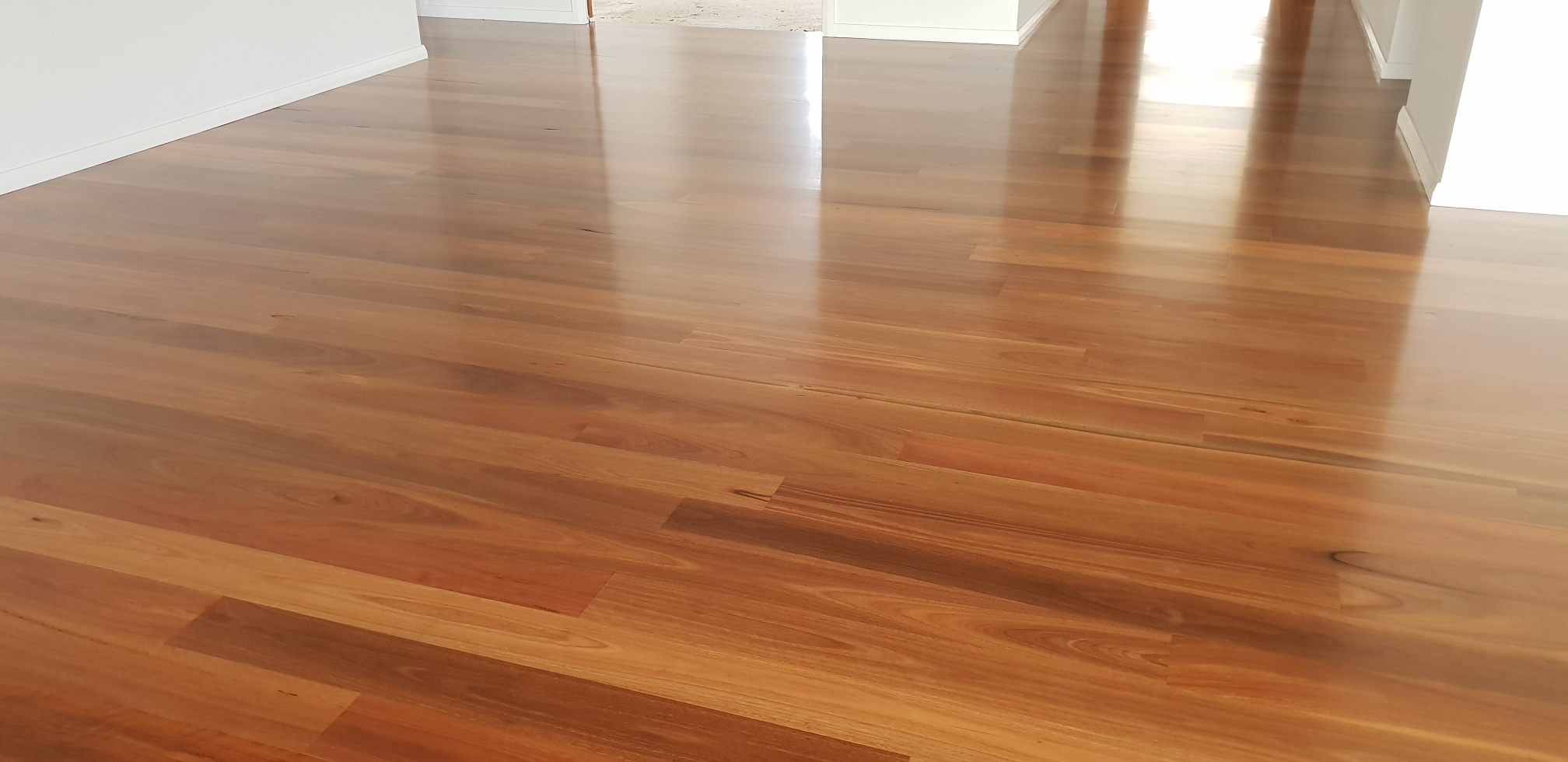 Satin Finish Spotted Gum Timber Floors